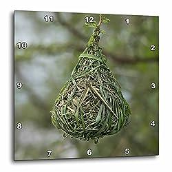 3dRose Danita Delimont - Birds - Africa, Tanzania, Serengeti. Nest of the Vitelline Masked Weaver. - 13x13 Wall Clock (dpp_256965_2)