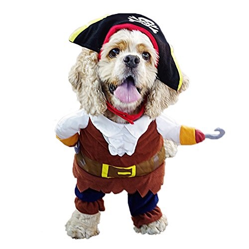 REXSONN Caribbean Pirate Pet dog Costume, so cool so fashion