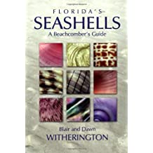 Florida's Seashells: A Beachcomber's Guide