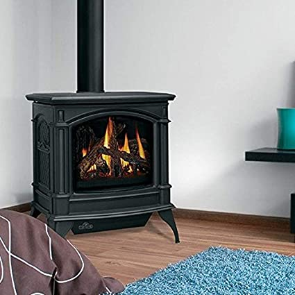 amazon com napoleon knightsbridge gds60 cast iron gas stove with rh amazon com