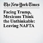 Facing Trump, Mexicans Think the Unthinkable: Leaving NAFTA | Elisabeth Malkin