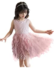 Hotwon Baby Girl Floral Dress Sleeveless Tulle Lace Party Dress Flower Girl Dress Princess Dress Toddler Clothes