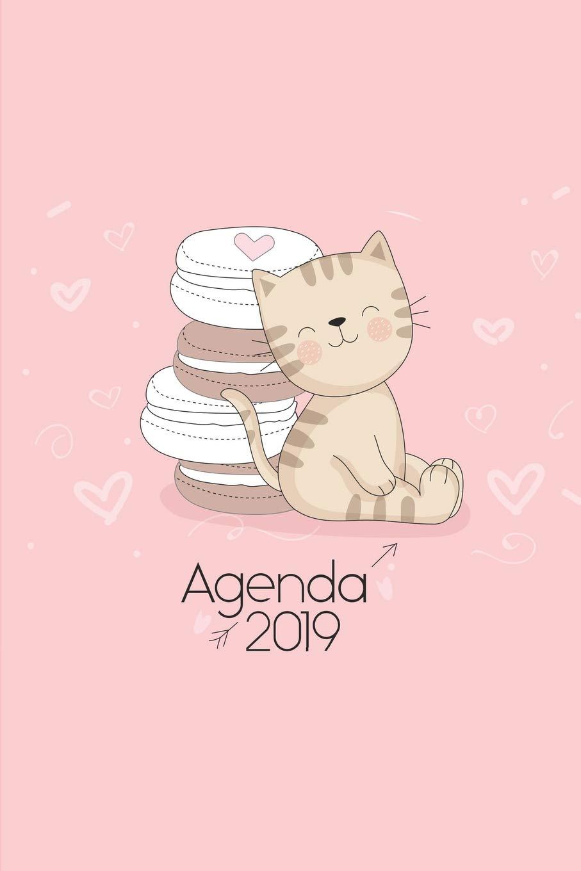 Agenda 2019: Agenda Mensual y Semanal + Organizador I Cubierta con tema de Gatos Enero 2019 a Diciembre 2019 6 x 9in: Amazon.es: Gato Journals, Casa: Libros