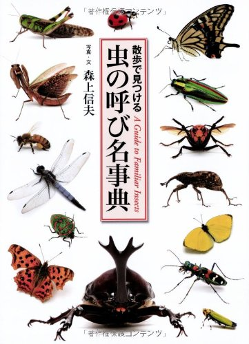 虫の呼び名事典 (散歩で見つける)