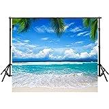 10x10FT Blue Ocean Backdrops Photography Cloth Vinyl Photo Backgrounds Hawaiian Beach Photographic Wedding Backgrounds Props Backgrounds Y075