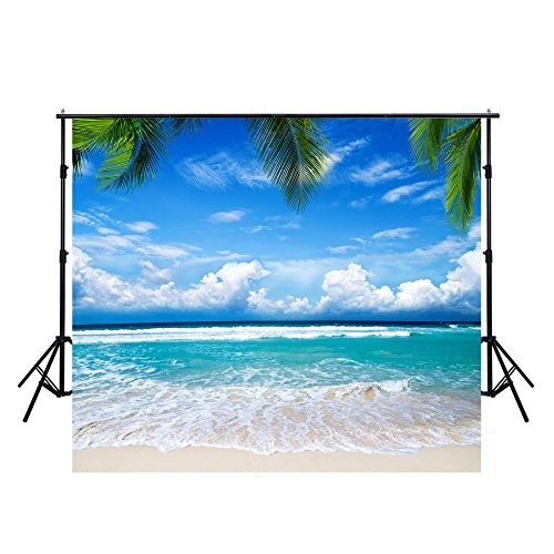 10x10FT Blue Ocean Backdrops Photography Cloth Vinyl Photo Backgrounds Hawaiian Beach Photographic Wedding Backgrounds Props Backgrounds Y075