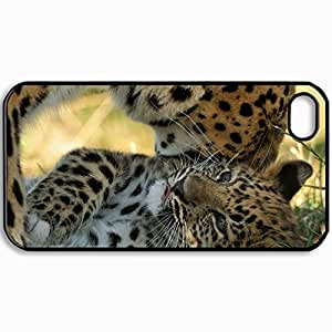 Personalized Protective Hardshell Back Hardcover For iPhone 4/4S, Amur Leopard Cub Kitten Mhood Predators Leopard Design In Black Case Color