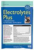 Electrolytes Plus Multi-Species Supplement