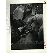 1989 Press Photo Katrena Hughes Feeds Rescued Dogs by Benewah County Sheriff