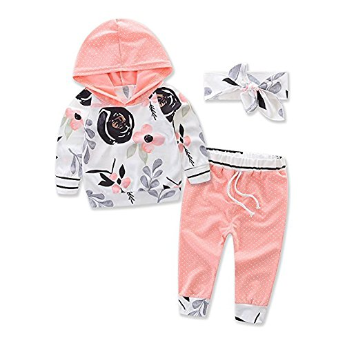 Baby Girls Floral Hoodie+ Floral Pant Set Leggings 2 Piece Outfits (12-18M, Pink)