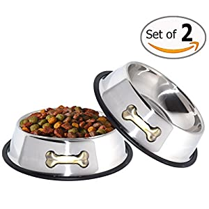 GPET Dog Bowl - Bone Design Stainless Steel Dish with Non-Skid Rubber Base Perfect for Puppies and Middle Size Pets 32 Ounces (Set of 2)