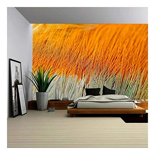 wall26 - Texture Pheasant Feather - Removable Wall Mural | Self-Adhesive Large Wallpaper - 66x96 ()