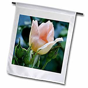 WhiteOak Photography Rose Prints - Peach Rose - 12 x 18 inch Garden Flag (fl_47981_1)
