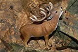 Collectible Figurine Red Deer Animal Nativity Scene Wild Life Christmas Winter - USA_Mall