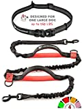 Hands Free Dog Leash for Running - Large Dogs - Bungee Leashes (Black & Red)