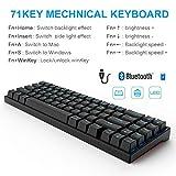 RK71 Mechanical Keyboard 71 Keys 70% LED