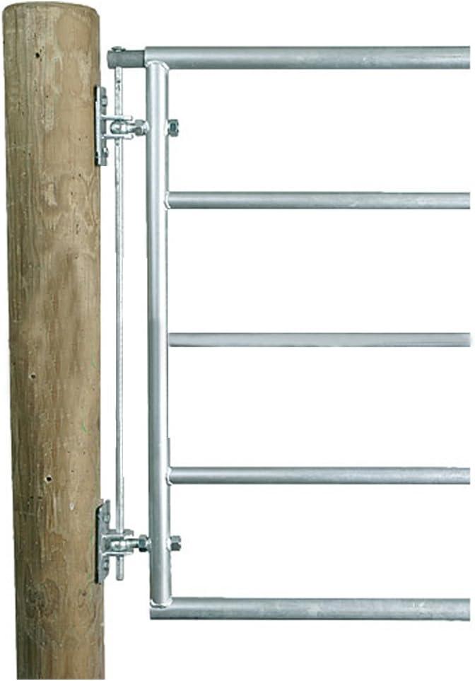 interdactilar de Set de protección, galvanizado para puertas de mimbre – 303419: Amazon.es: Jardín
