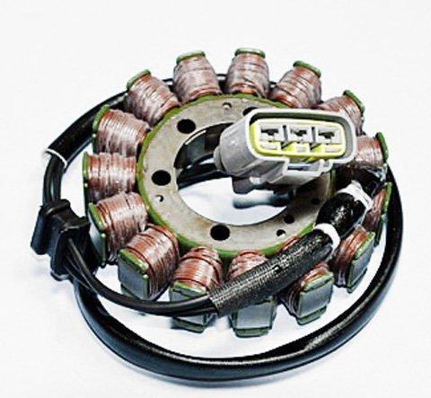 Rick's Motorsport Electrics & Обмотки статоров