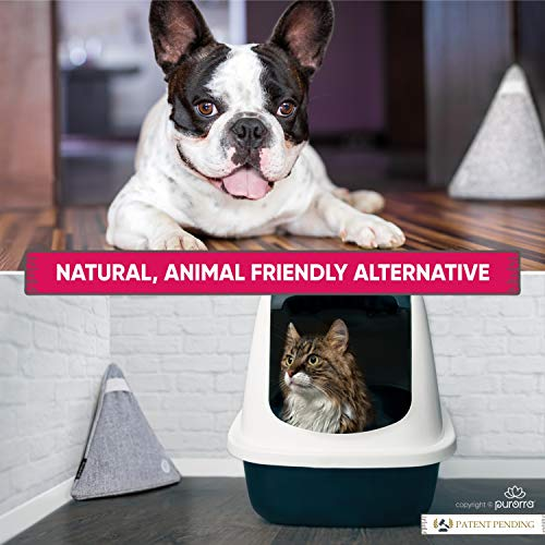 Odor Eliminators for Home Bamboo Charcoal Air Purifying Bag - Natural and Decorative Activated Charcoal Odor Absorber Pet Odor Eliminator Bamboo Charcoal Bags 5 Bags Family Pack
