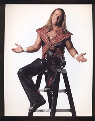 SHAWN MICHAELS 8X10 COLOR PHOTO by Old_Vintage_Ball_Cards