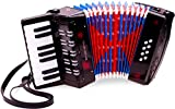 New Classic Toys - 10057 - Musical Toy Instruments - Accordion with Music Book - Black