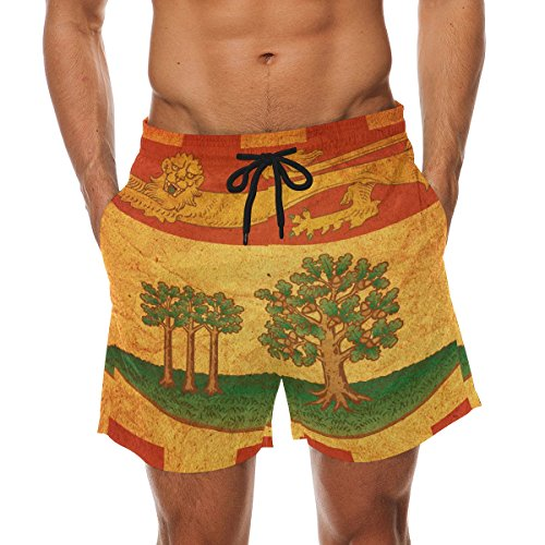 (Vintage Prince Edward Island Provincial Flag Men's Swim Trunks Swimming Beach Shorts Watershort)