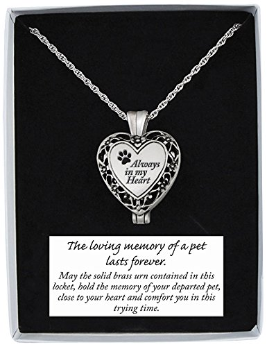 Always Shower (Cathedral Art AL103 Always in My Heart Memorial Pet Locket, Includes 24-Inch Chain)