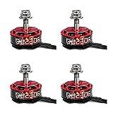 GARTT 2 Pairs QE2306 2750KV Brushless Motor 3-4S For RC Mini Racing Drones QAV 210 250 300 FPV Quadcopter Frame