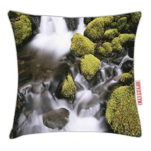 NBTJZT USA, Washington, Olympic National Park, Sol Pillow Cover Standard Throw Pillowcase 18X18 Inch