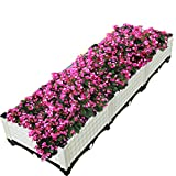 Inchant Garden/Living Room/Study Room/Kitchen/Balcony/Backyard/Rooftop Vegetable Raised Garden Bed Enthusiasts Best Choice elevated Grow Flower Planter with Wheels - Water Storage,Cold Resistant