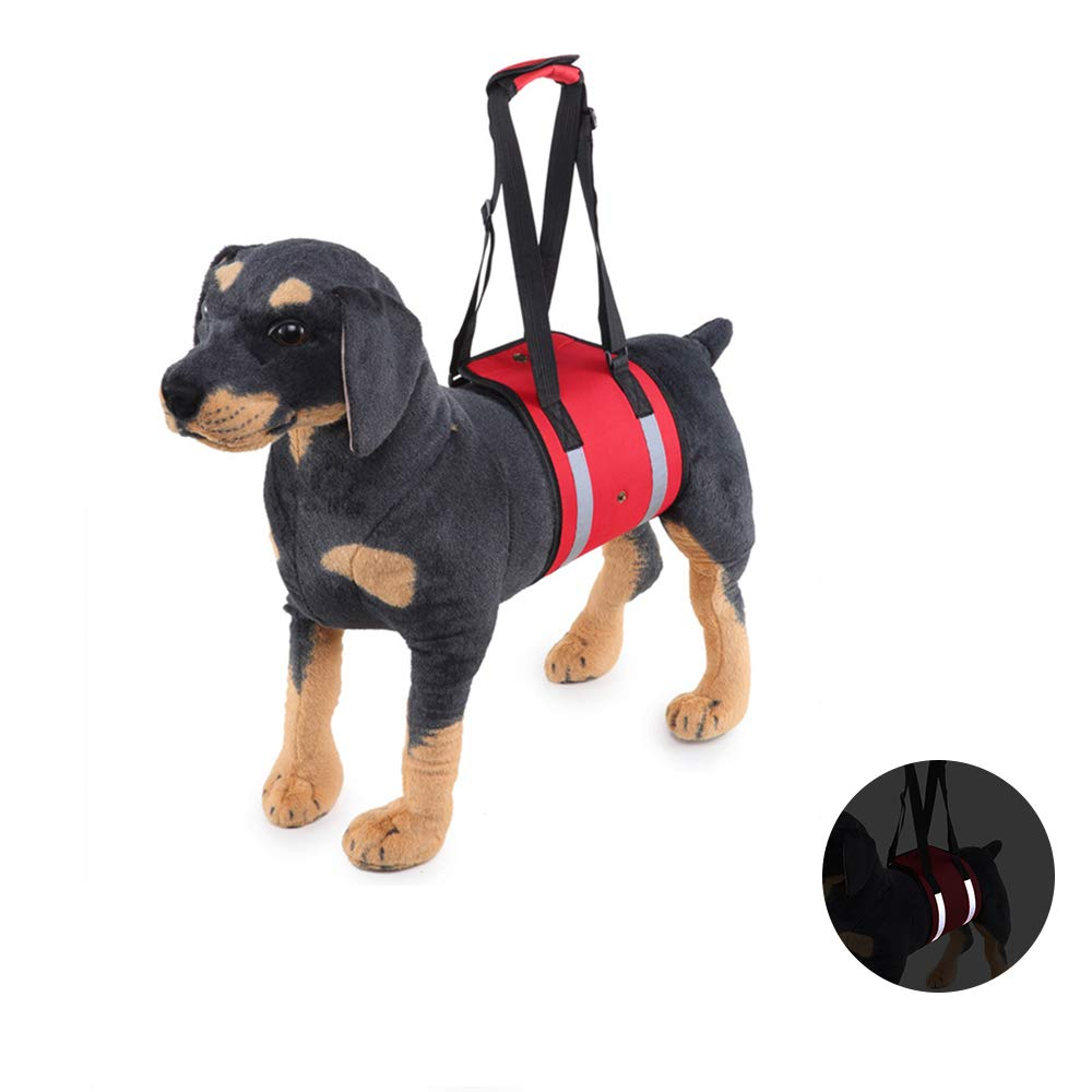 L Reflective Dog Support Harness Dog Lift Support Rehabilitation Harness, Help Pet with Weak Back Leg, Aid Mobility and Rehabilitation,L