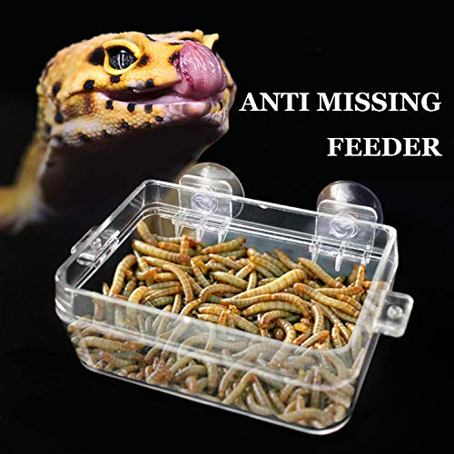 BWOGUE Suction Cup Gecko Feeder Anti-Escape Dish Reptiles Ledge Accessories for Chameleon Iguana Lizard Reptile Food and Water Feeding