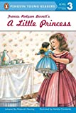 img - for A Little Princess (All Aboard Reading, Level 3, Grades 2-3) book / textbook / text book