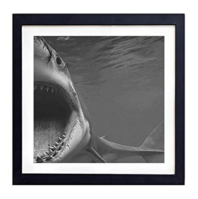 "Great White Shark - Art Print Black Wood Framed Wall Art Picture For Home Decoration - Black and White 14""x14"" (35cmx35cm) - Framed"