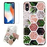 for iPhone XR Marble Case and Screen Protector,Unique Pattern Design Ultra Thin Slim Fit Soft Silicone Phone Case Bumper,QFFUN Shockproof Anti-Scratch Protective Back Cover - Tropical