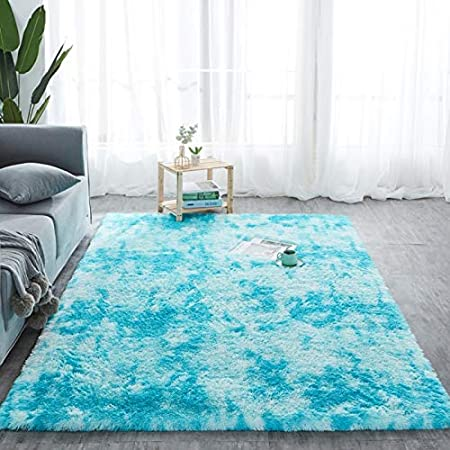 Dkhsy Shaggy Fluffy Area Rugs Carpets for Baby Nursery Teens Girls Rooms Plush Shag Rugs for Kids Bedrooms Home Room Floor Accent Decor Fur Rug