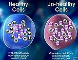 12% Hydrogen Peroxide Food Grade - 8 oz and 4 oz