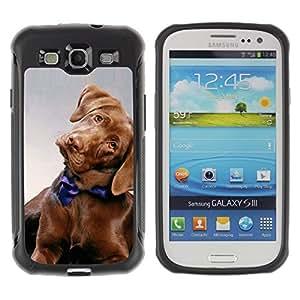 Suave TPU GEL Carcasa Funda Silicona Blando Estuche Caso de protección (para) Samsung Galaxy S3 III I9300 / CECELL Phone case / / Golden Retriever Puppy Dog Canine /