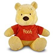 Disney Baby Winnie the Pooh Small Stuffed Animal, 14
