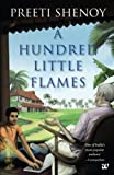img - for A Hundred Little Flames book / textbook / text book