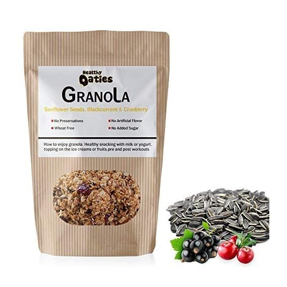 Healthy Oaties Cookies Handmade Honey And Oats Granola With Sunflower Seeds,Dried Cranberries And Blackcurants - 150Gm