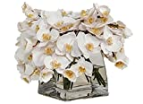 The French Bee Watergarden Collection Silk Phalaenopsis Orchids in a Large Tapered Square Vase, White