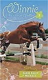 Bold Beauty (Winnie the Horse Gentler #3)