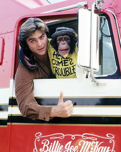 Greg Evigan 8x10 Promotional Photograph B.J. and the Bear Monkey in Truck