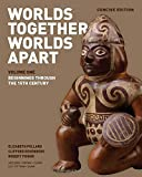img - for Worlds Together, Worlds Apart: A History of the World: From the Beginnings of Humankind to the Present (Concise Edition) (Vol. 1) book / textbook / text book