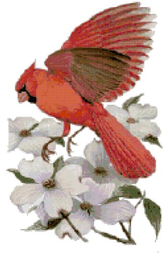 North Carolina State Bird (Northern Cardinal) and Flower (Flowering Dogwood) Counted Cross Stitch Pattern