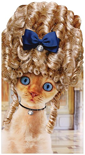 Amazon Cat In Old Fashioned Wig Avanti Oversized Funny Birthday