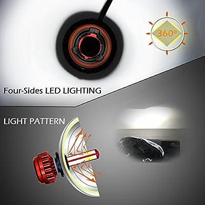 Snowlux H11 LED Headlight Bulb, 6000K 80W 8000 Lumens, Extremely Bright Cool White Conversion Kit, IP68 H9 H8 - Low Beam/Fog Light Bulb: Automotive