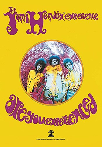 Jimi Hendrix Are You Experienced Large Fabric Poster / Flag hr