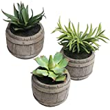 MyGift Assorted Mini Artificial Succulents Plants in Rustic Wood Barrel Design Pots, Set of 3, Brown For Sale